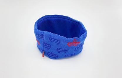 Obrázek Modrá čelenka